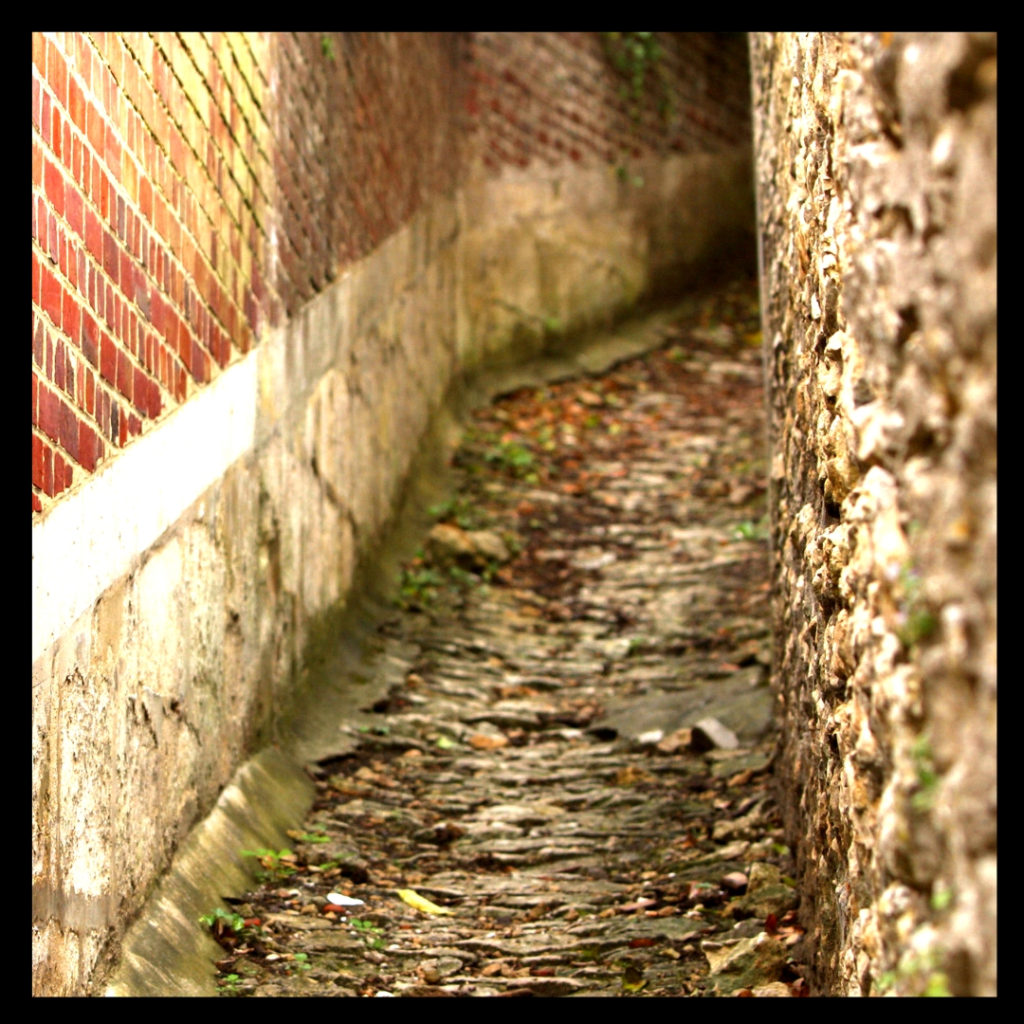Old path uphill lined with bricks